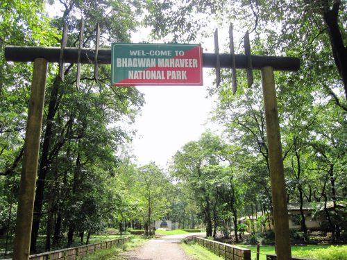 Bhagwan-Mahaveer-Sanctuary-and-Mollem-National-Park-1