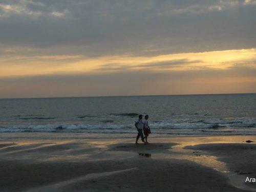 Arambol beach 1 (1)